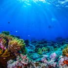 How deep does the ocean go?