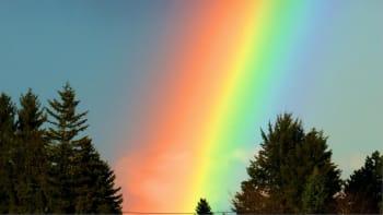 Mystery Doug Rainbow