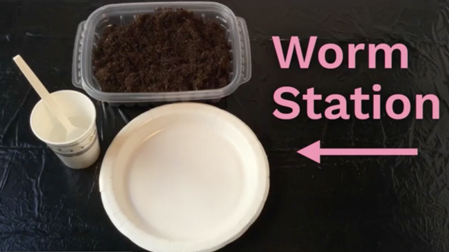 Do worms really eat dirt?