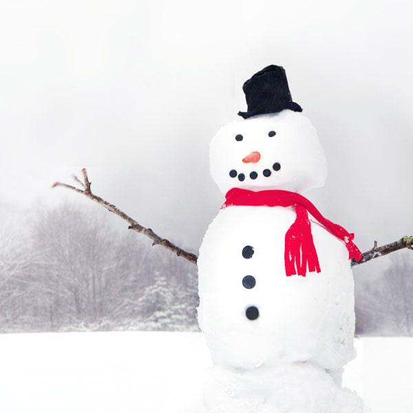 Thumbnail seasonalscience winter2017 whyissnowwhite