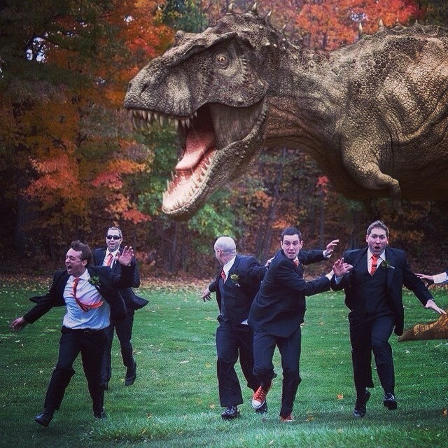Weddingtrexinstagram